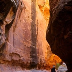 White Canyon